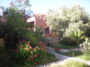 jardin proche piscine
